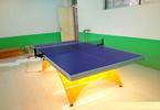 室內金彩虹LED乒乓球臺多少錢