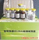 尿转铁蛋白(TRF)ELISA试剂盒