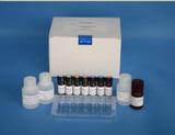 豚鼠转化生长因子β1(TGF-β1)ELISA试剂盒