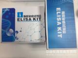 人Insulin检测试剂盒
