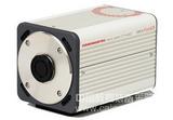 宁夏sCMOS 高灵敏度相机 ORCA-Flash2.8