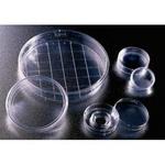 BD-Falcon 细菌培养皿  351008