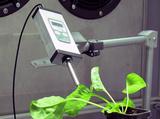 Monitoring Pen MP110叶绿素荧光自动监测仪