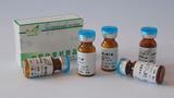 染料木素 CAS:446-72-0