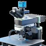 雙光子熒光顯微鏡