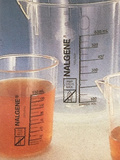 中性红0.1%的冰醋酸溶液
