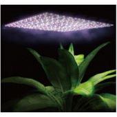 植物生长人工太阳系统