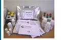 美國IBL 新喋呤ELISA KIT (歐洲 CE 認證)