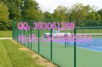廣東PVC墨綠色球場防護網、球場圍網
