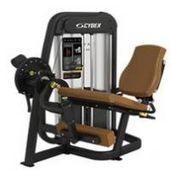 大腿伸展练习器/附全局运动幅度控制器 New Eagle Leg Extension w/Total RLD