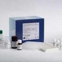 兔血管性血友病因子/瑞斯托霉素辅因子试剂盒,VWF取样要求