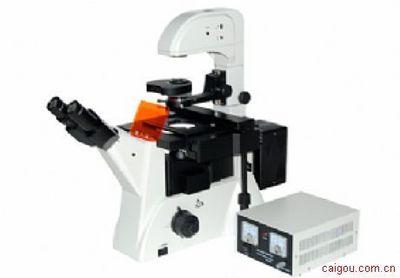广东荧光倒置显微镜MF52