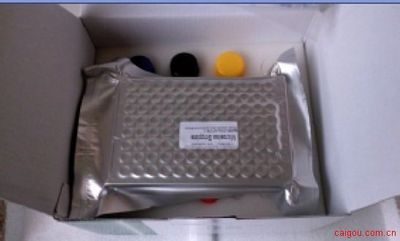 人β细胞素(BTC)ELISA Kit
