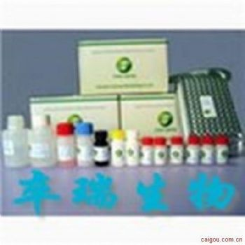 乙型流感病毒抗体检测试剂盒