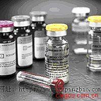 人可溶性CD14(sCD14)ELISA试剂盒
