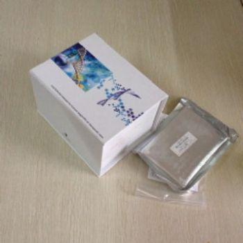 人胰岛素样生长因子1(IGF-1)ELISA试剂盒