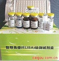 冠状病毒抗原(CV-Ag)ELISA试剂盒