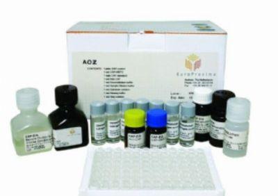 裸鼠环加氧酶2(COX-2)ELISA试剂盒