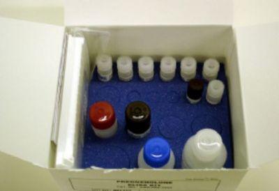 小鼠脂蛋白脂酶(LPL)ELISA试剂盒