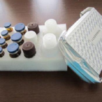 人干扰素诱导T细胞趋化因子(ITAC/CXCL11)ELISA试剂盒