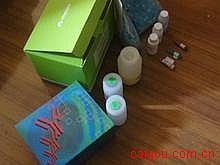 人肥大细胞类胰蛋白酶(MCT)ELISA试剂盒