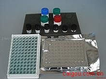 人抑肽酶(AP)ELISA试剂盒