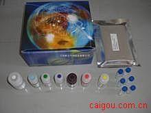 小鼠Elisa-凝血酶抗凝血酶复合物试剂盒,(TAT)试剂盒