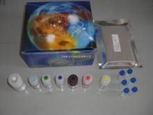 鱼类超敏C反应蛋白(hs-CRP)ELISA试剂盒