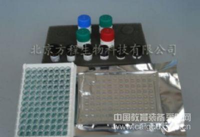 ELISA试剂盒现货供应大鼠IL-32 ELISA Kit检测价格