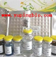 人儿茶酚抑素(CST)ELISA试剂盒