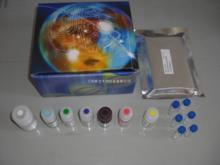 鸡热休克蛋白70(HSP-70)ELISA试剂盒说明书