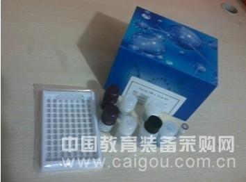 兔肌球蛋白轻链(MLC)酶联免疫试剂盒