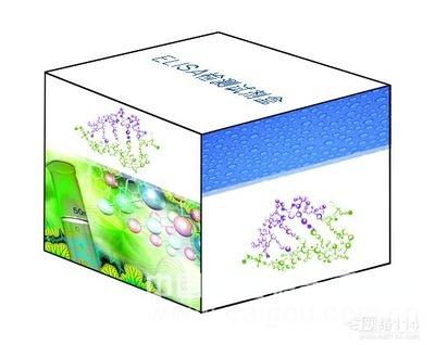 牛基质金属蛋白酶5(MMP-5)ELISA试剂盒