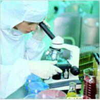 进口标准品CAS号:14007-09-1标准品愈创甘油醚杂质B