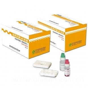 人可溶性血管内皮生长因子受体3(sVEGFR-3)ELISA试剂盒
