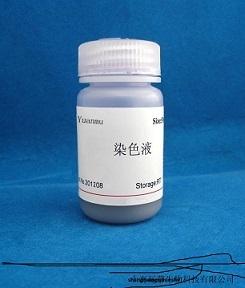 乙酸铵溶液(1mol/L)无菌)