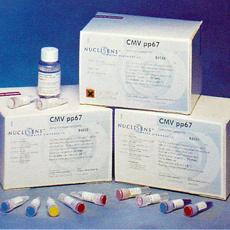 大鼠甲状腺素(T4)ELISA试剂盒