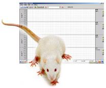 小动物无创血压仪