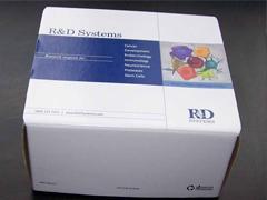 人促生长激素释放激素(GRH)ELISA试剂盒