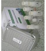 兔AChRab ELISA/兔乙酰胆碱受体抗体试剂盒