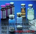 仓鼠免疫球蛋白G1(IgG1)ELISA试剂盒