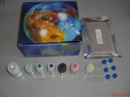 大鼠VD2检测Elisa试剂盒