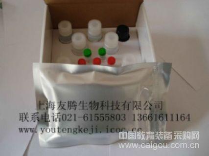 人B细胞生长因子(BCGF)ELISA Kit