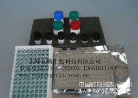 鱼类主要组织相容性复合体(MHC)ELISA Kit