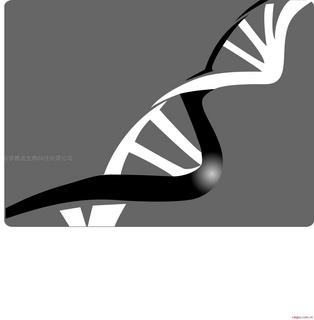 碧波TUNEL细胞凋亡检测试剂盒(显色法)(细胞样本专用)
