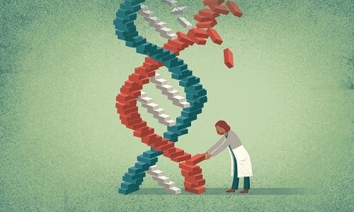6年拿出1.9亿 美国将资助基因组编辑研究项目