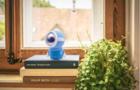 新高考下学英语不用愁 跟小墨机器人在家练口语听力
