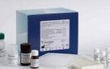人血清淀粉样蛋白A试剂盒,SAA取样要求