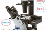 奥林巴斯倒置显微镜CKX53