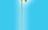 科学探究仪器啄木鸟 科学探究实验室解决方案